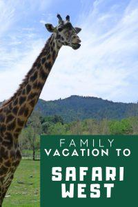 safari west vacation pin