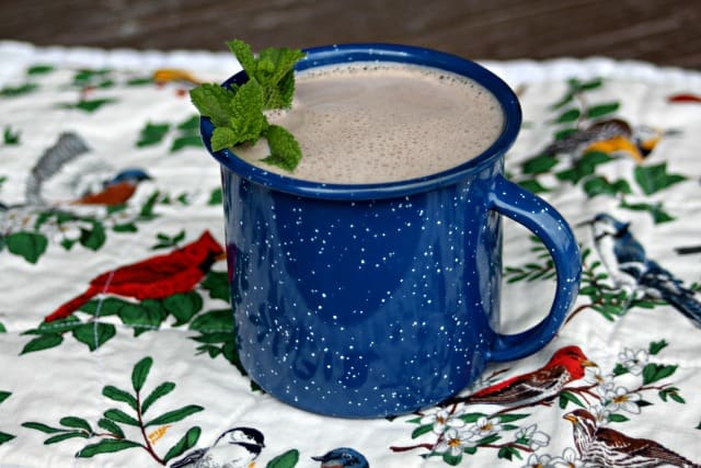 herbal hot chocolate hort